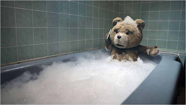 TED : to bear or not to bear