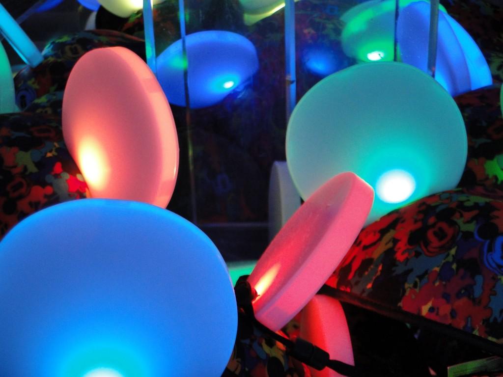 DISNEYLAND - Disney Dreams par Go with the Blog