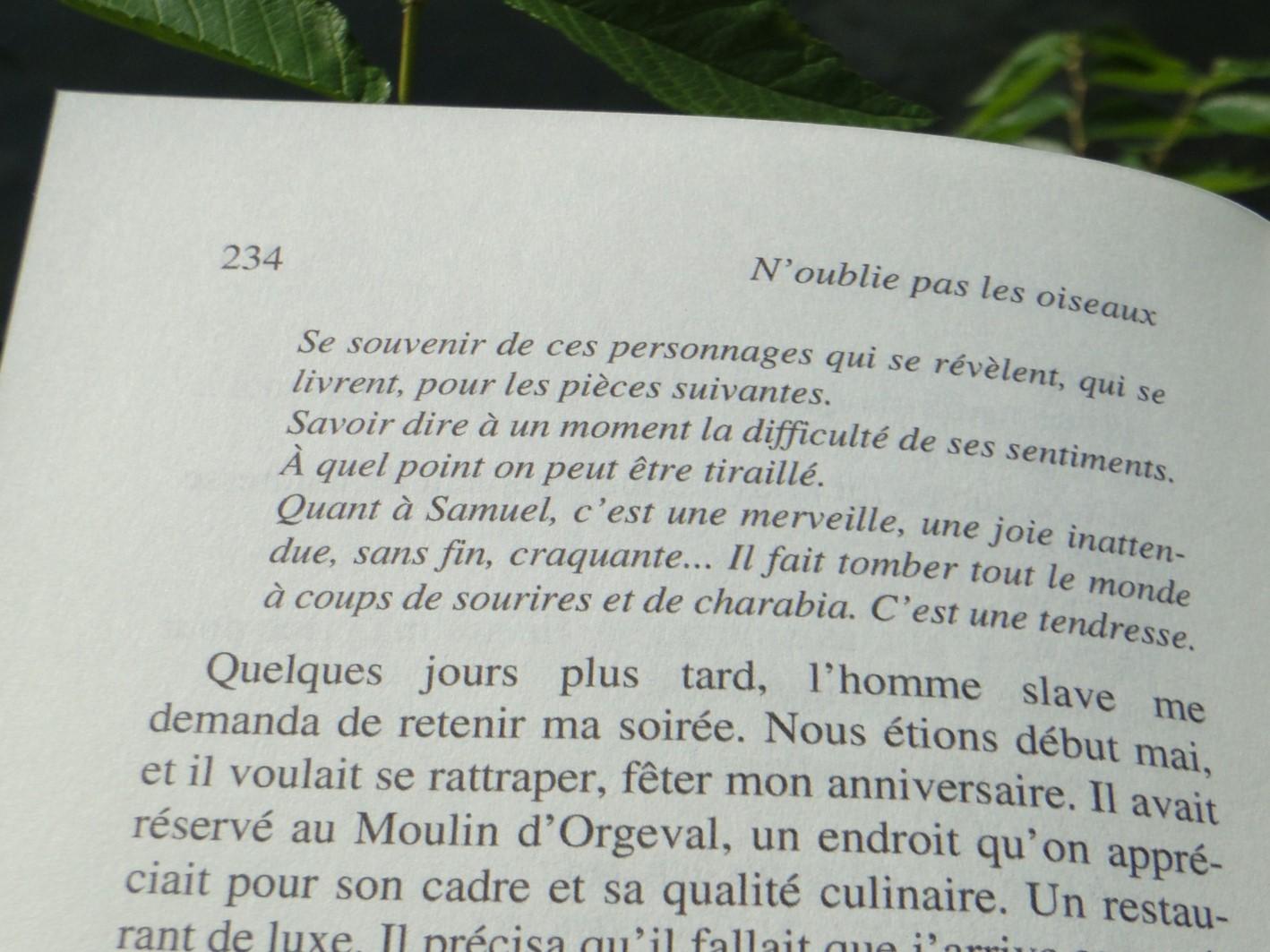 N'OUBLIES PAS LES OISEAUX Murielle Magellan - Go with the Blog 2