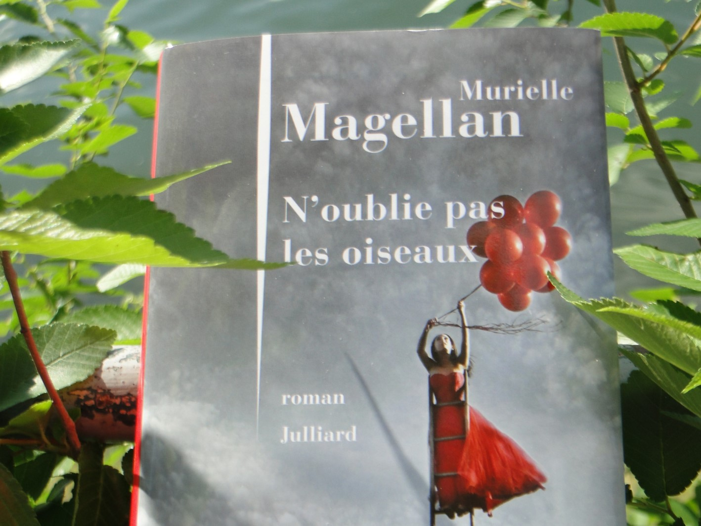 N'OUBLIES PAS LES OISEAUX Murielle Magellan - Go with the Blog