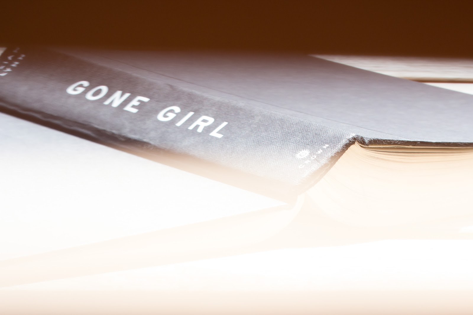 GONE GIRL - book cover - Go with the Blog