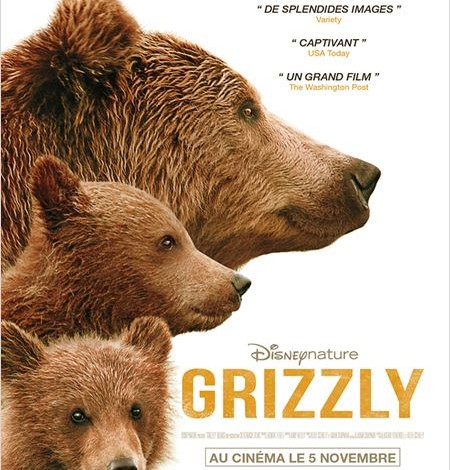 GRIZZLy - go with the blog - affiche du film