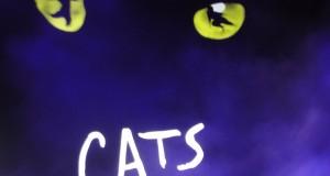 CATS : le Musical au succès planétaire arrive à Paris !
