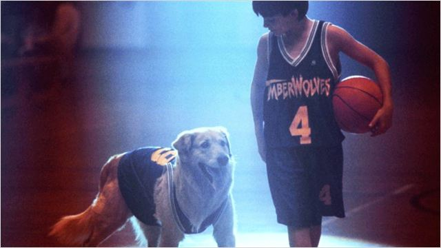 air bud - go with the blog