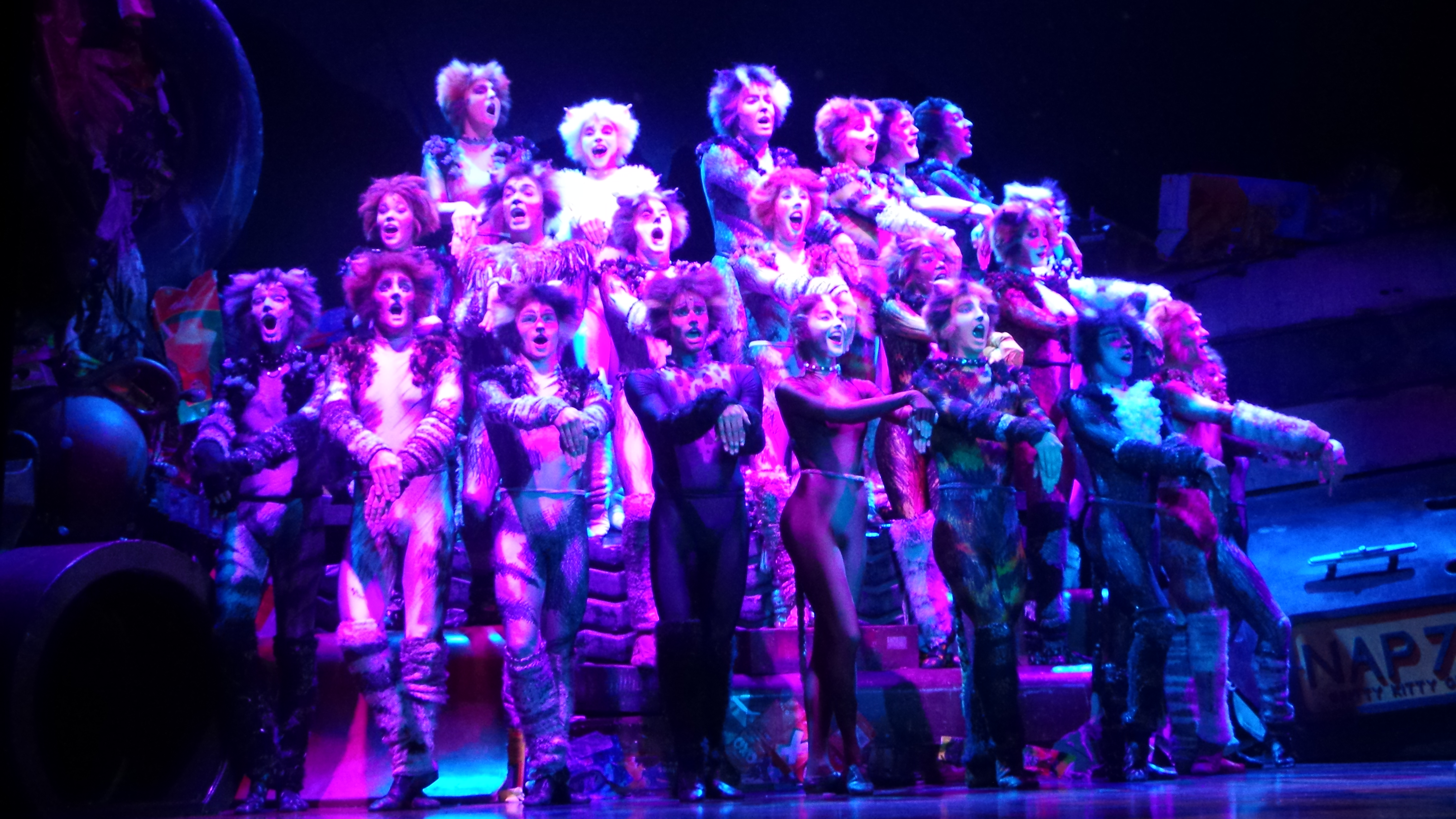 CATS Le Musical Theatre MOGADOR PARIS 2015 - photo 20151001_154758