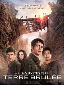 Le labyrinthe la terre brulée - Go with the Blog - Affiche