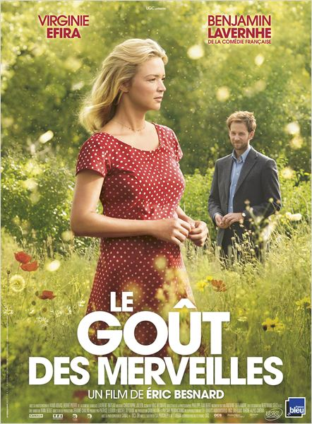 LE GOÛT DES MERVEILLES - Affiche du film 2015 Virginie Efira - Go with the Blog
