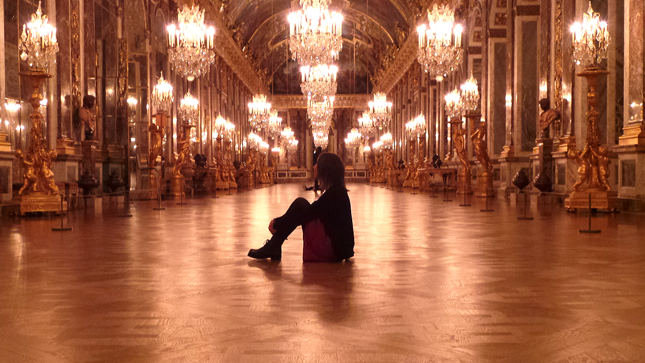 Versailles Intime - Une nuit au Château Visite Nocturne - copyright photo Go with the Blog 2015-11-28 01.55.39