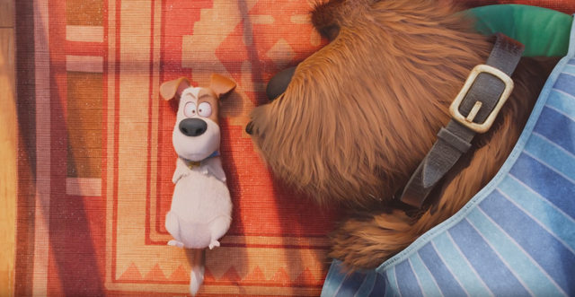 COMME DES BÊTES - The Secret Life Of Pets Illumination Entertainment Mac Guff Movie film 2016 Image 10 - Go with the Blog