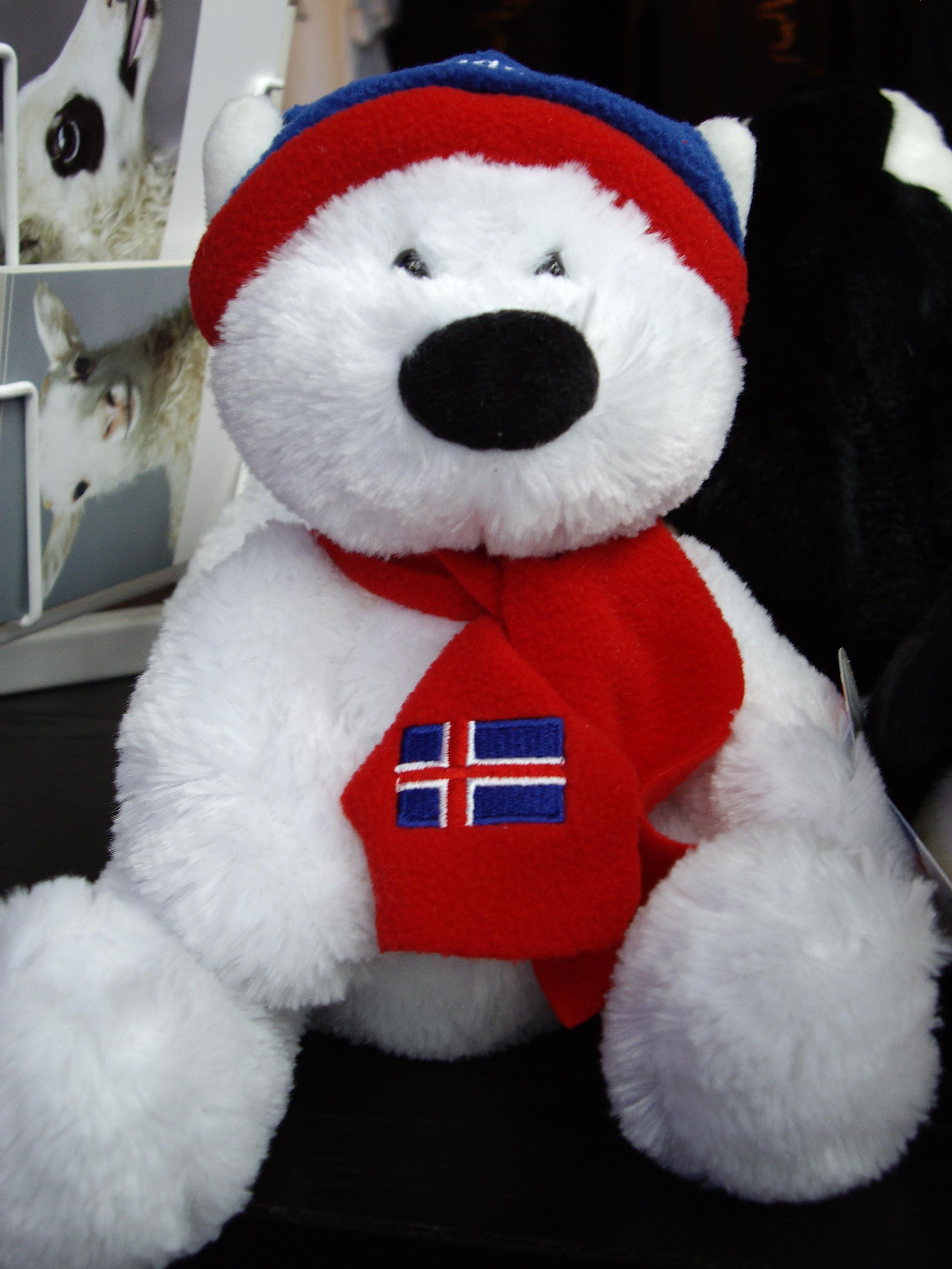 ISLANDE - Teddy Bear IcelandIMGP0101_Gros_islandais