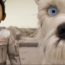 L'ÎLE AUX CHIENS : I wanna be your dog
